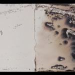 """Leaving Piece"" 3/95; Silver gelatin photographic chemigrams, thread; 15"" x 5"" each pre-sewn; 2016; Asheville Area Arts Council Gallery at the Grove Arcade, Asheville, NC"