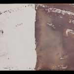 """Leaving Piece"" 4/95; Silver gelatin photographic chemigrams, thread; 15"" x 5"" each pre-sewn; 2016; Asheville Area Arts Council Gallery at the Grove Arcade, Asheville, NC"