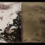 """Leaving Piece"" 7/95; Silver gelatin photographic chemigrams, thread; 15"" x 5"" each pre-sewn; 2016; Asheville Area Arts Council Gallery at the Grove Arcade, Asheville, NC"