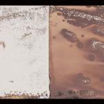 """Leaving Piece"" 8/95; Silver gelatin photographic chemigrams, thread; 15"" x 5"" each pre-sewn; 2016; Asheville Area Arts Council Gallery at the Grove Arcade, Asheville, NC"