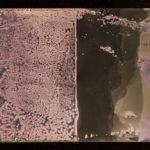 """Leaving Piece"" 10/95; Silver gelatin photographic chemigrams, thread; 15"" x 5"" each pre-sewn; 2016; Asheville Area Arts Council Gallery at the Grove Arcade, Asheville, NC"