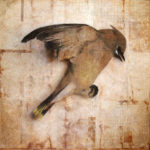 """Quiet""; Hand-colored inkjet photograph on tea bags, mounted on wood; 12"" x 12"" x 1.5""; 2011"