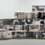 """Vague Word #2""; Silver gelatin photographic chemigrams, thread, nails; 25"" x 58"" x 1""; 2018"