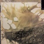 """Vague Word #3"" (detail 2); Silver gelatin photographic chemigrams, thread, nails; 27"" x 48"" x 1""; 2018"